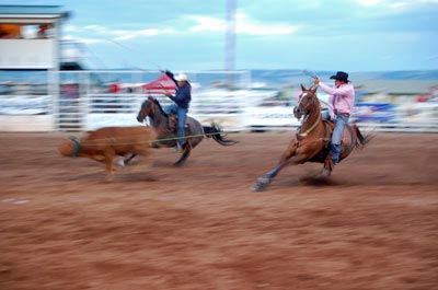 Rodeo action at Laramie's Jubilee Day's Celebration