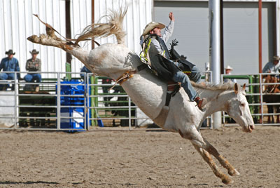 Rodeo saddlebronc riding.